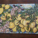 mattonelle limoni cucina 150x150 - Galleria