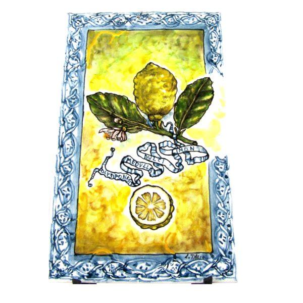 mat9 600x600 - Mattonelle limoni 40 x 25 cm (cod. MAT5)