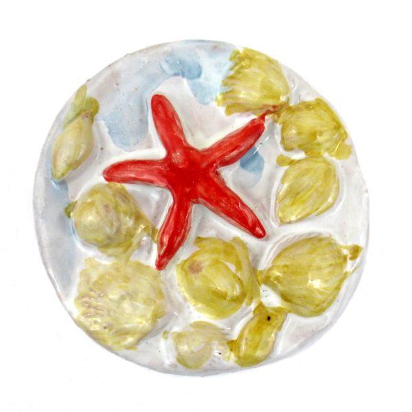 calamita.stella4 600x600 - Calamita mare stella marina