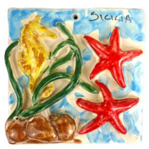 mattonella mare cavalluccio stelle marine
